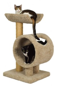 cat-tree-with-tunnel