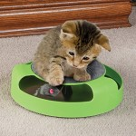 Feline Frenzy: Rotating Mouse Under a Cat Scratcher