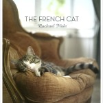 Professional Cat Photos From the French Countryside
