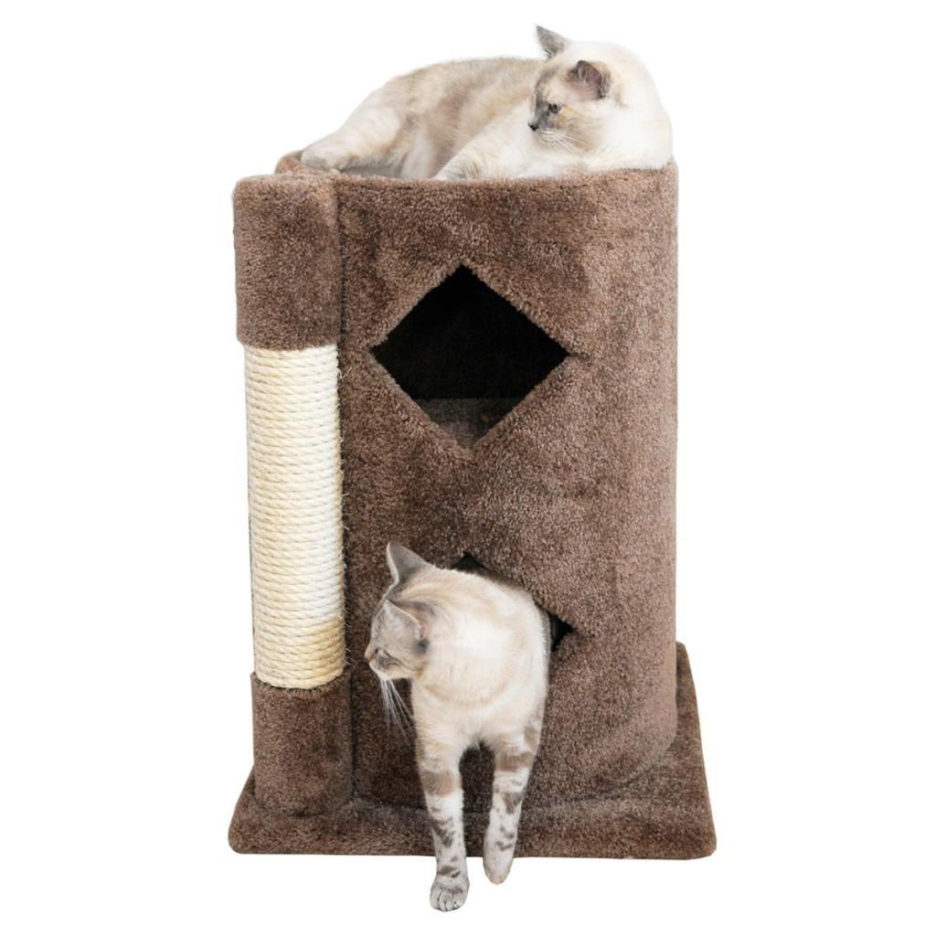 cat-cavern
