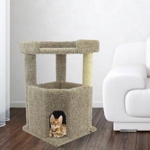 cat-in-corner-condo