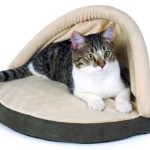 Cat warmer: electric bed shaped like a hut