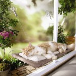 Cat Window Seat: Sturdy Yet Easy to Assemble