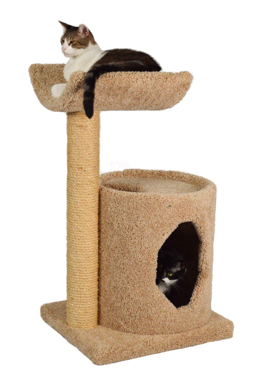 Cute Cat Accessories