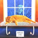 Window Mounted Cat Bed With Removable Sheepskin