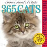 365 Cat a Day Calendar
