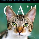 Page a Day Gallery Cat Calendar for 2016