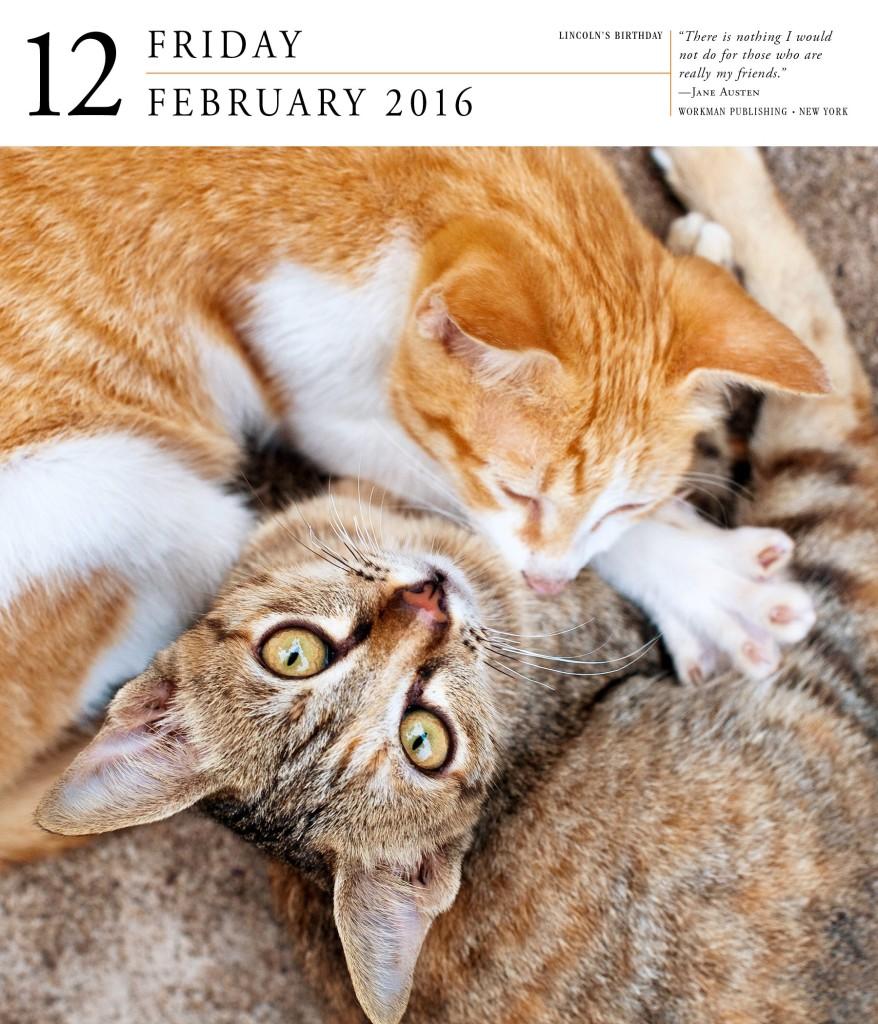 cats-in-calendar